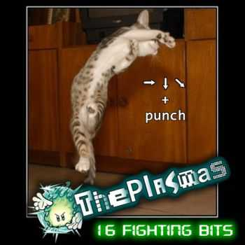 ThePlasmas - 16 Fighting Bits (2010)