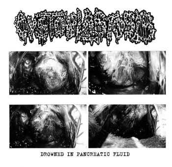 Cystoblastosis - Drowned In Pancreatic Fluid (Demo) (2015)