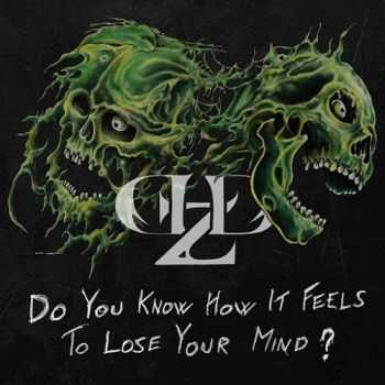 Demolized - Do You Know How It Feels To Lose Your Mind? (2016)