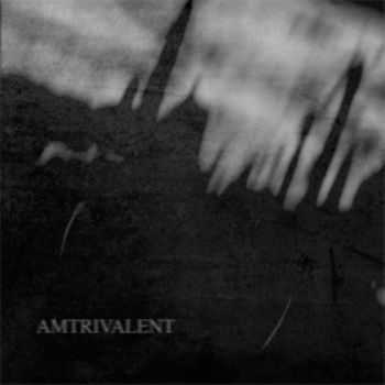 Lifeless Within / Negative Or Nothing / Fliegend - Amtrivalent (Split) (2010) (LOSSLESS)