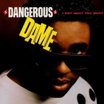 Dangerous Dame - I Got What You Want (1990)