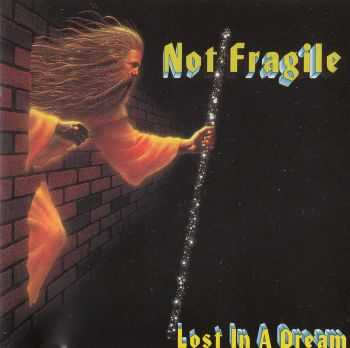 Not Fragile - Lost in a Dream (1993) LOSSLESS + MP3