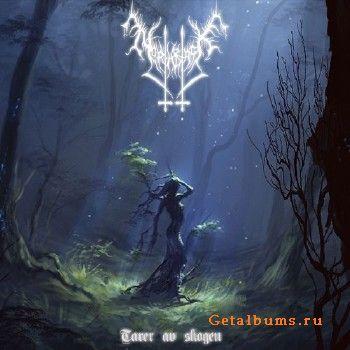 North Black – Tarer av Skogen (2018)