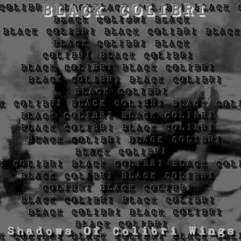 Black Colibri – Shadows Of Colibri Wings (2018)